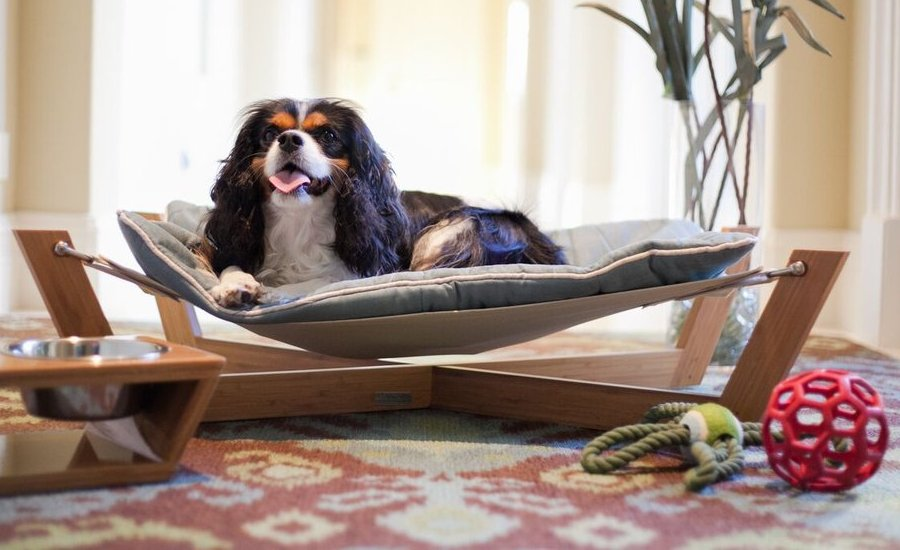 dog hammock bed 21 creative beds ideas to get inspired 10419