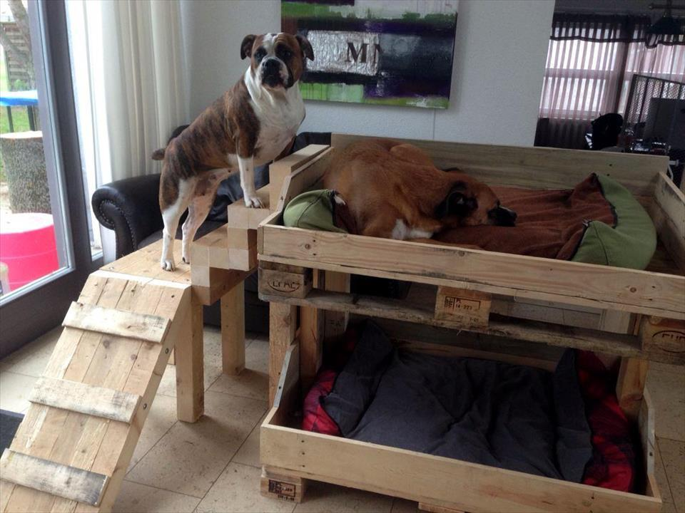DIY Pallet Dog Bunk Bed