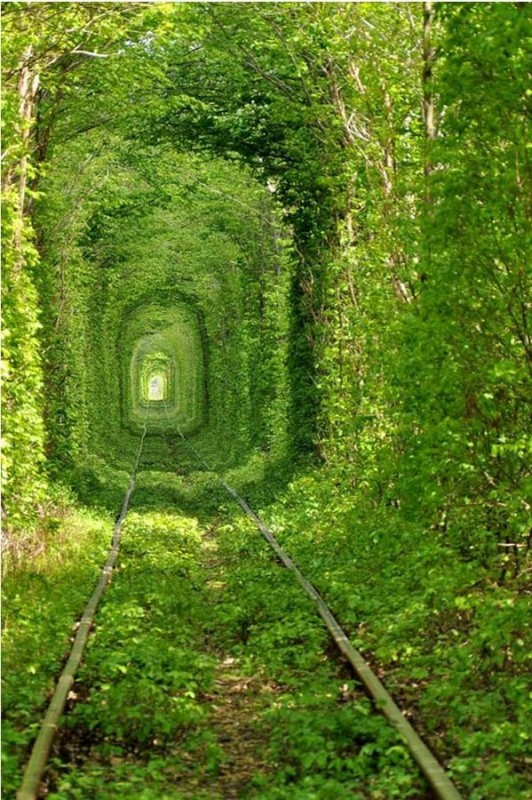Tunnel of love in Klevan