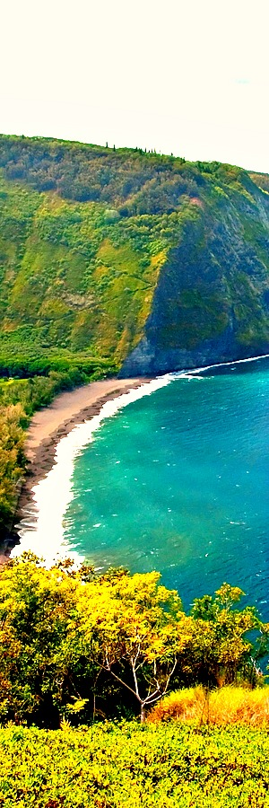 Waipio Valley Beach, Big Island, Hawaii