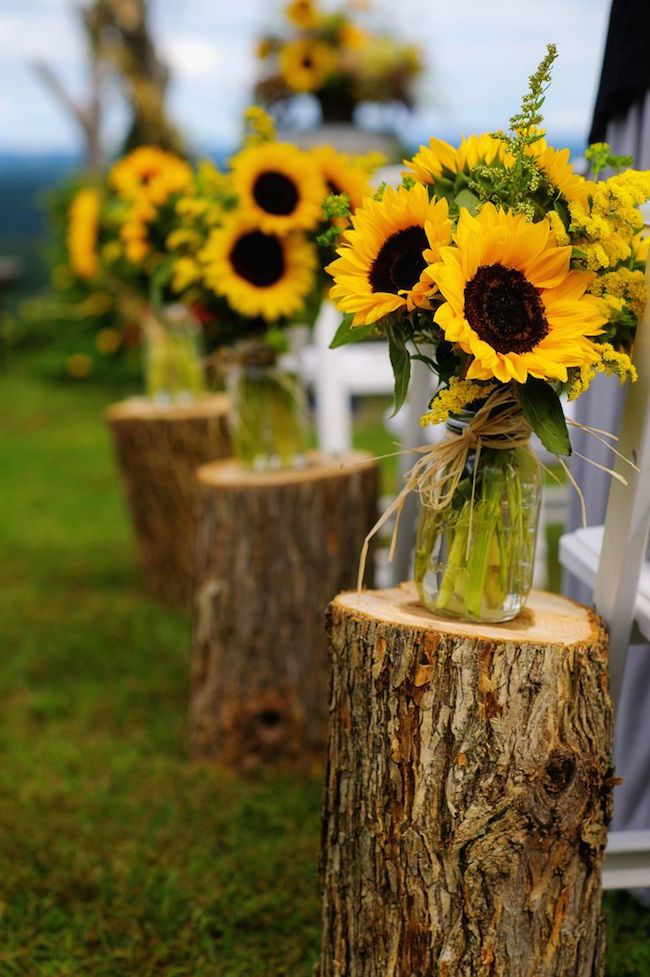 Tree Stumps Flower Decoration