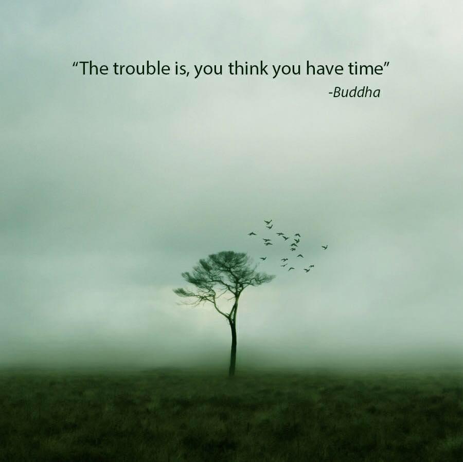Best Nature Quotes (1)