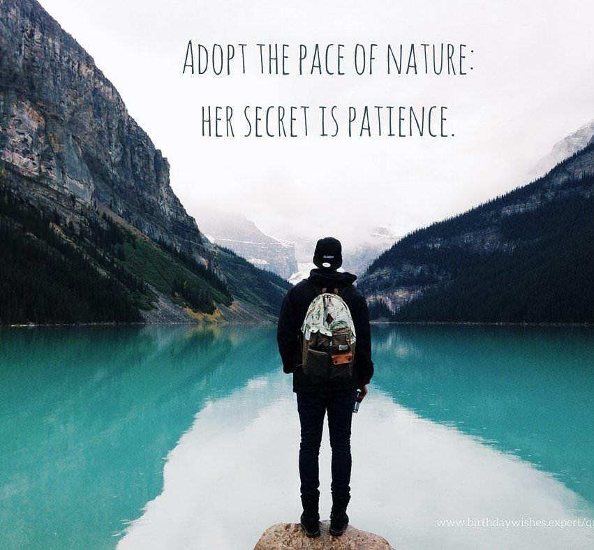Best Nature Quotes (11)