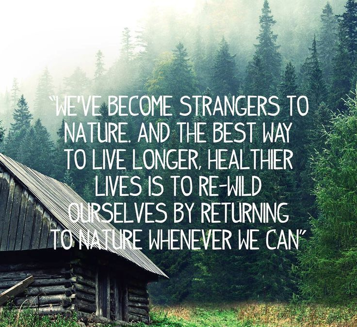 Best Nature Quotes: 25 Best Nature Quotes To Inspire You