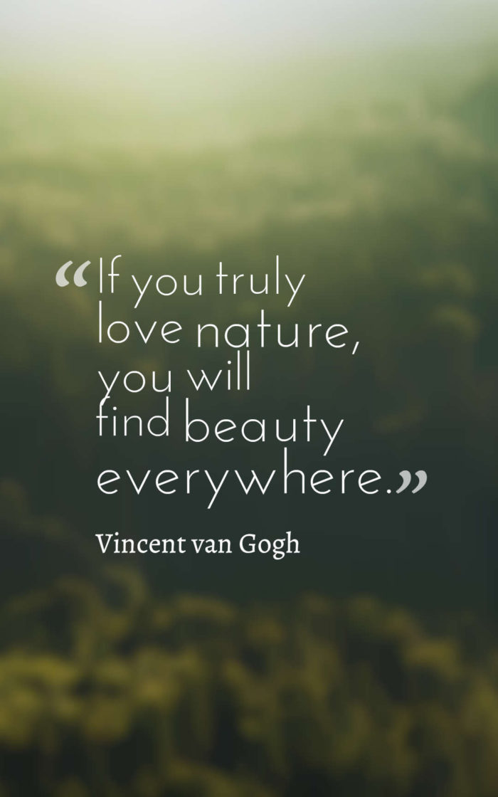 Best Nature Quotes (5)