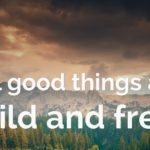 25 Best Nature Quotes To Inspire You