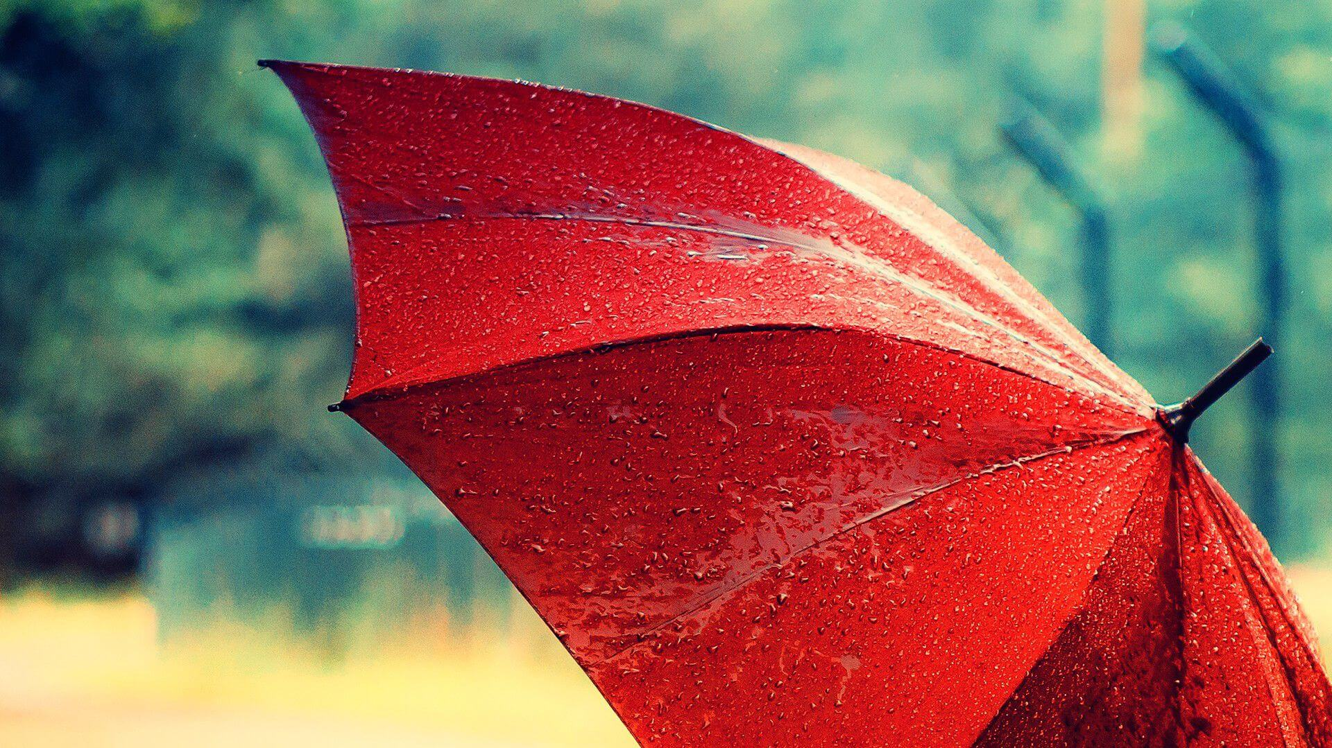 HD Rain Wallpapers For Your Desktop (6)