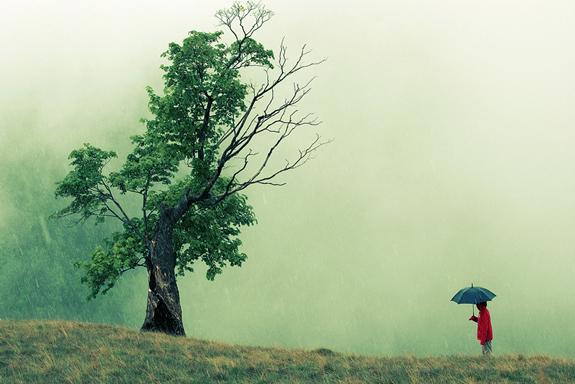 Rain (11)