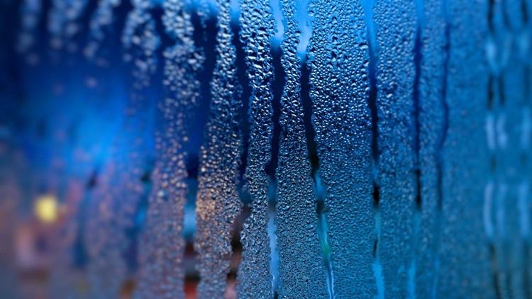 Rain (12)