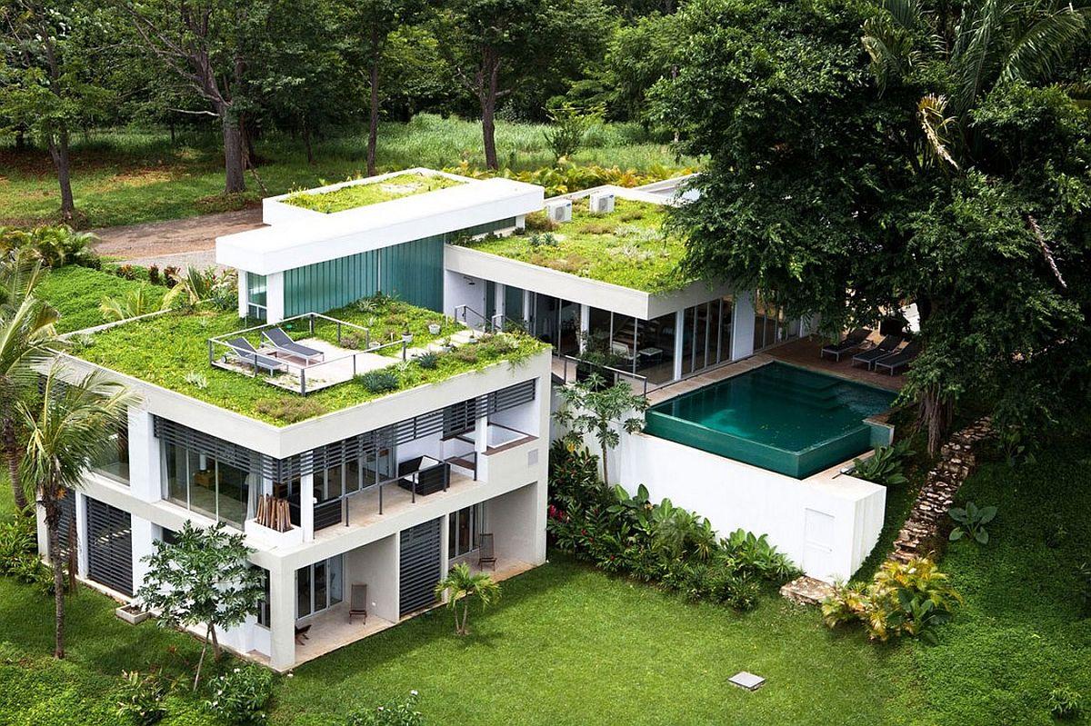 Roof Gardens (6)