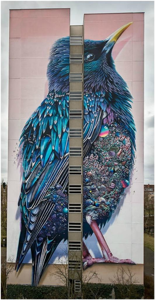 Street Art (12)