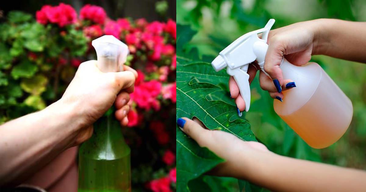 Do Green Pesticides Work