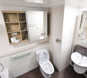Most Effective Toilet Cleaning Solutions