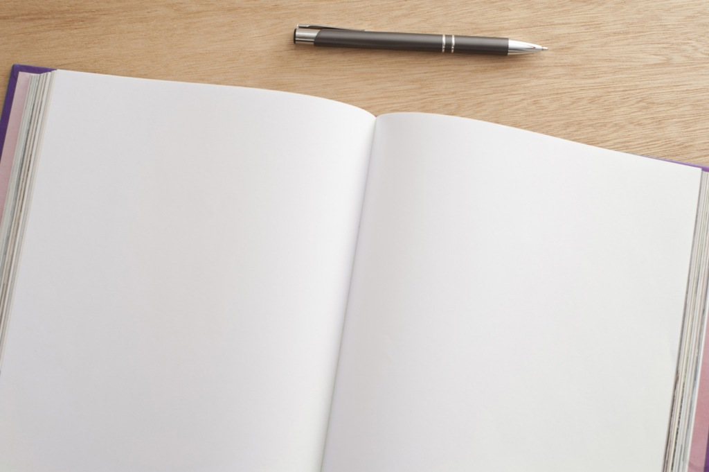 Double spread open blank pages in a journal
