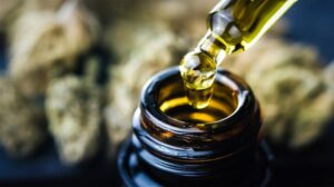 Everything You Need to Know About Cannabigerol