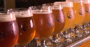 Craft Beer Popularity
